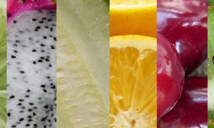 Basische Lebensmittel im Überblick