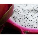 Drachenfrucht