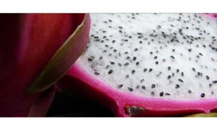 Drachenfrucht – das Auge isst mit