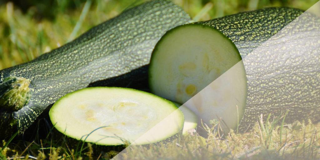 Zucchini - basenreiches Gemüse.