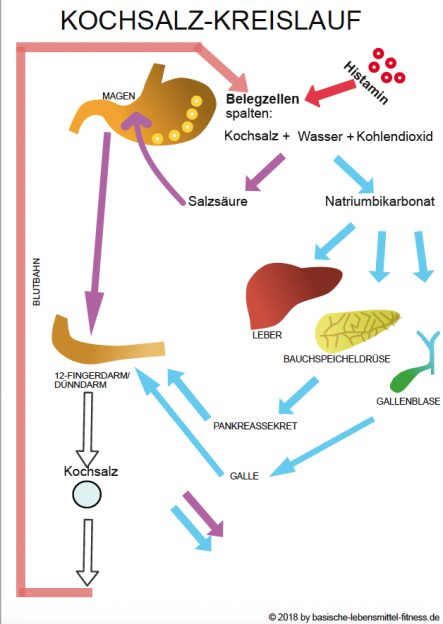 Histaminintoleranz Ernährung